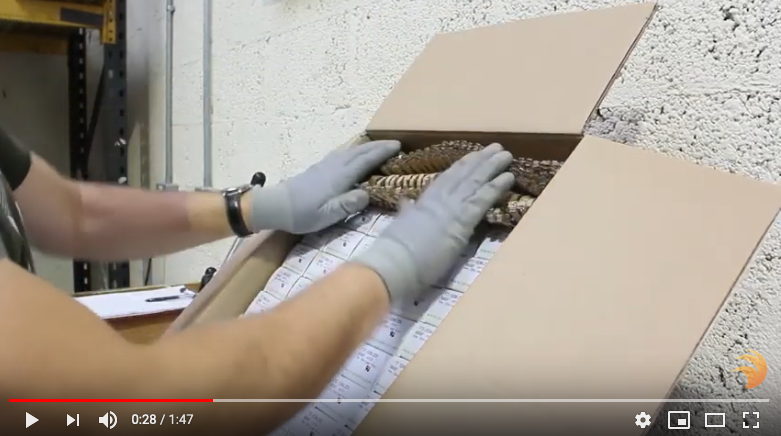 How Ceramicx Adopted ProfiPack For Service Efficiency